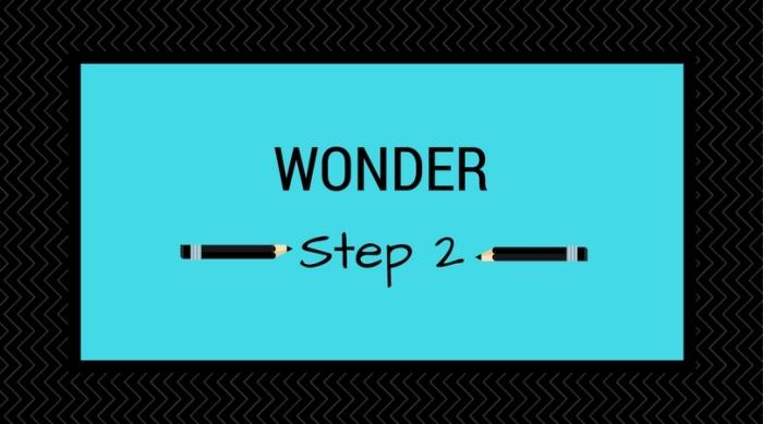 Step 2_Wonder